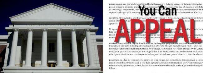 апеляційна скарга на рішення арбітражного суду