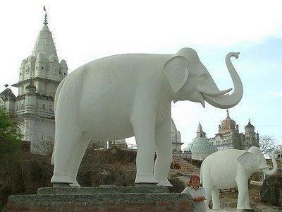 білий слон