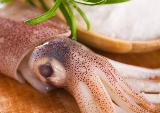 Чим корисні кальмари?