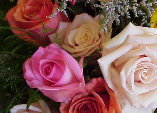 Что символизируют цветы?