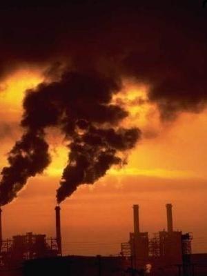 Что такое экологический кризис и как с ним бороться?