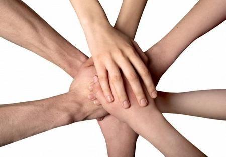 Что такое социальная организация и как она работает?