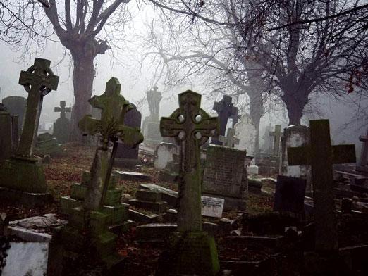 Где дремлют мертвые?