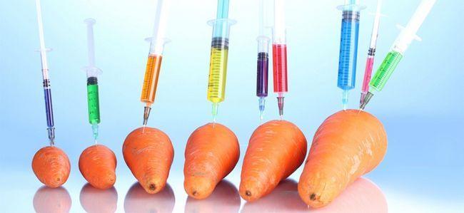 Генномодифіковані продукти харчування