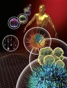 імунітет людини
