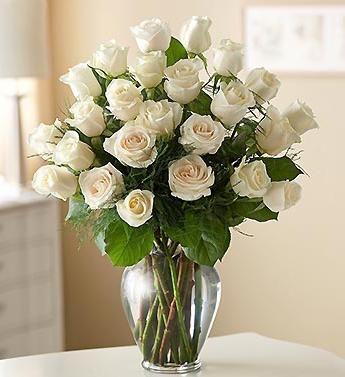 Язык цветов: к чему дарят белые розы и не только