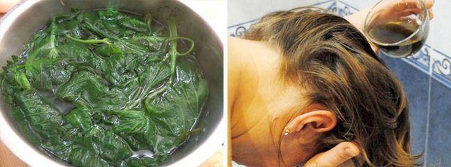 Кропива зміцнить ваше волосся