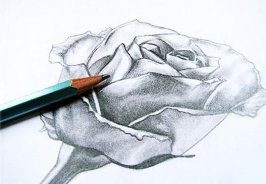 Как нарисовать цветы карандашом?