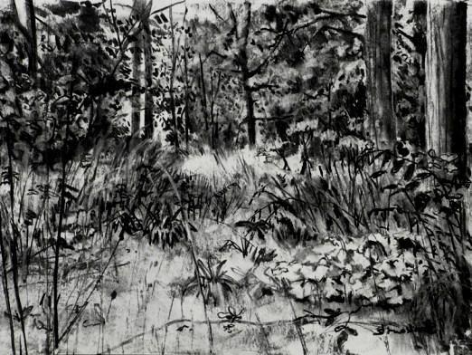 Как нарисовать лес?