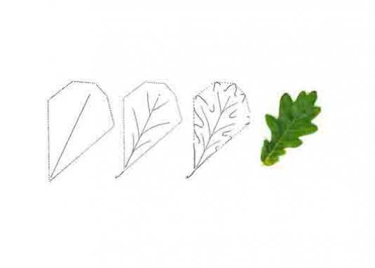 Как нарисовать листья?