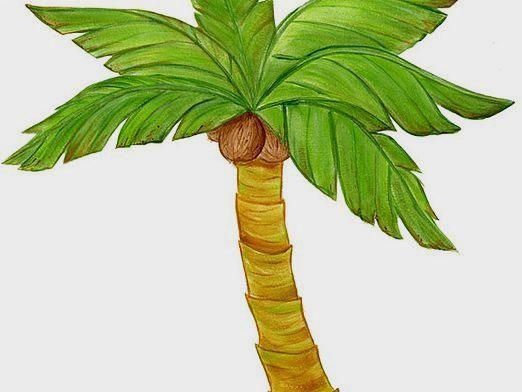 Как нарисовать пальму?