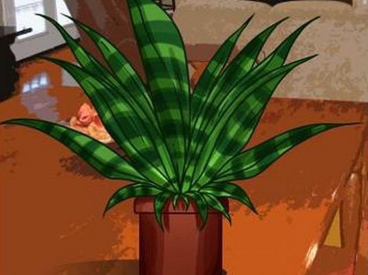 Как нарисовать растение?