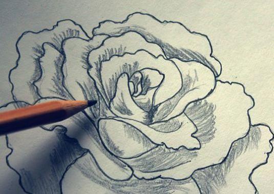 Как нарисовать розу карандашом поэтапно?