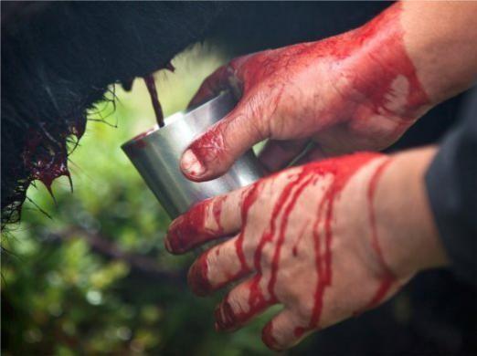 Как пить кровь?