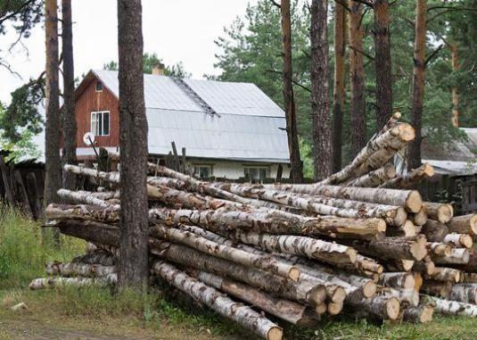 Как получить лес для строительства?