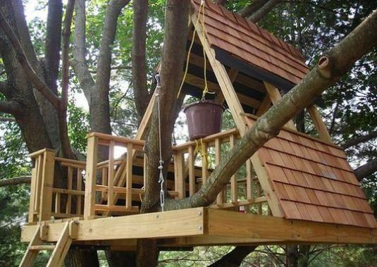 Как построить дом на дереве?