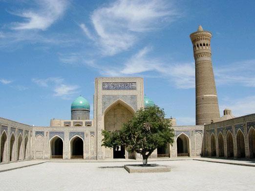 Как позвонить в узбекистан?