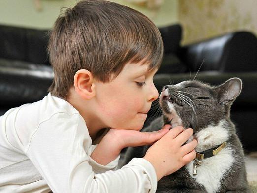 Как разговаривать с кошкой?