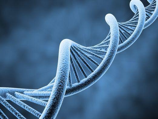 Как решать задачи по генетике?