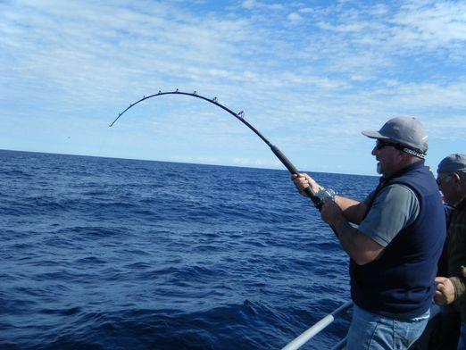 Как рыбачить?