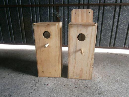 Як зробити гніздо папузі?