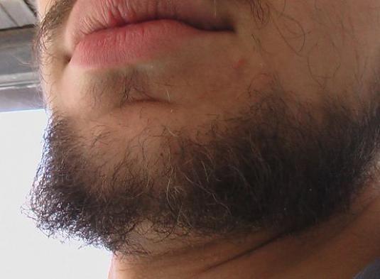 Как ускорить рост бороды?