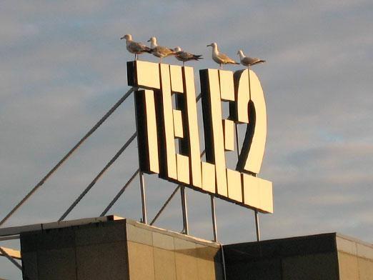 Как узнать тариф теле2?