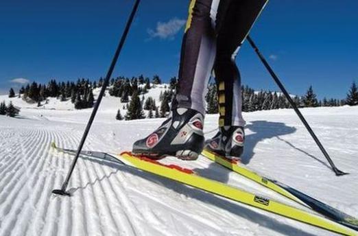 Как выбирать беговые лыжи?