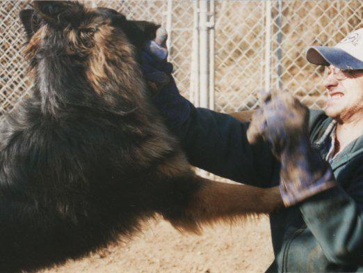 Как защититься от собаки?