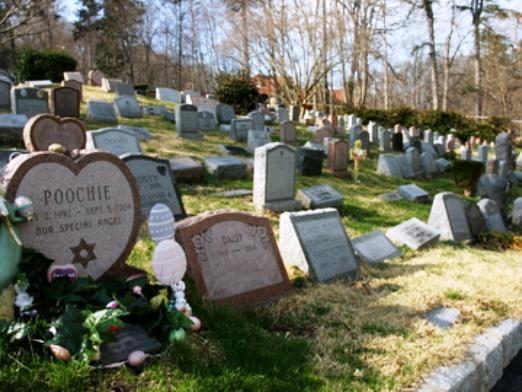 Когда ходят на кладбище?