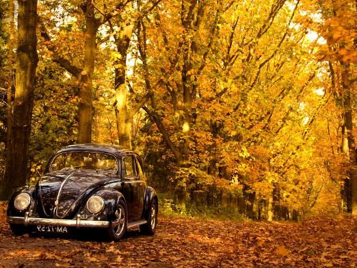 Куда поехать в октябре отдыхать?