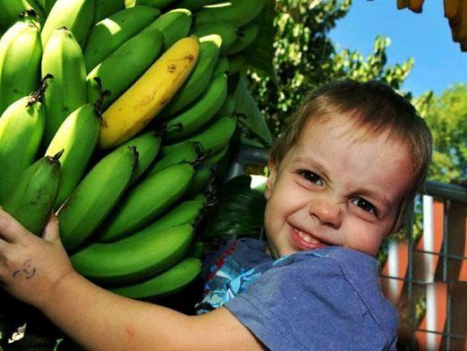 Можно ли ребенку банан?