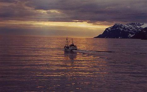 Океаны мира: современное состояние