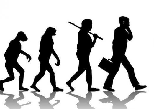 Почему человек ходит?
