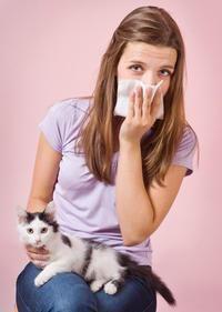 алергія на кішок лікування
