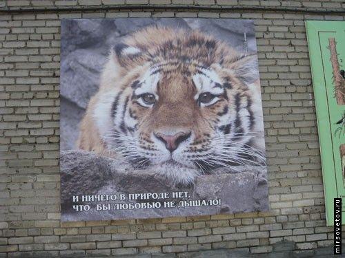 Посещение новосибирского зоопарка