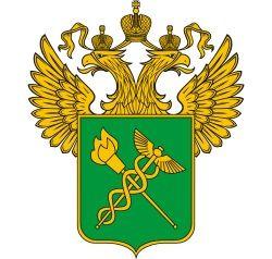 Правила прохождения таможенного контроля (россия)