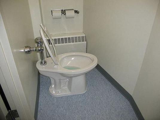 Сколько раз ходить в туалет?