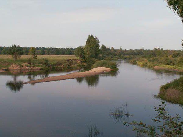 річка ведмедиця фото