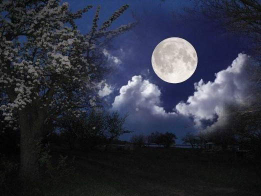 В какой лунный день родился?