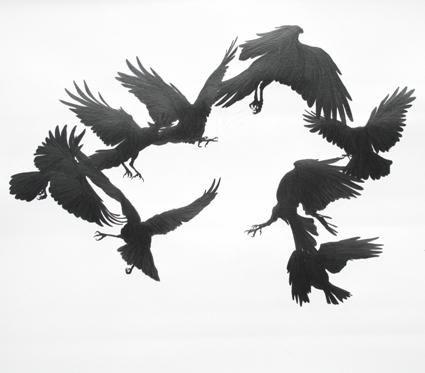 скільки років живе ворон