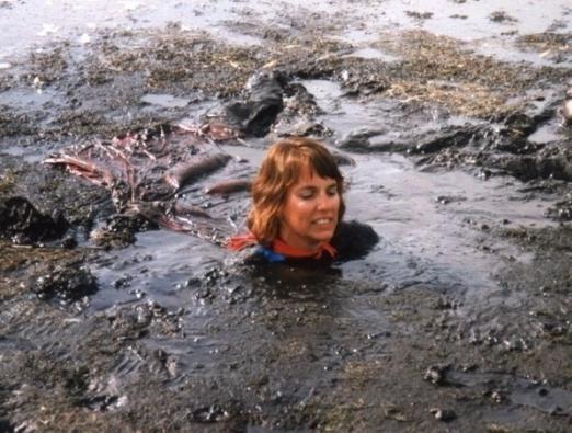 Зыбучие пески и болота
